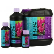 Blossom builder b´cuzz liquido fertilizante