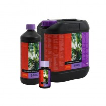 Booster coco universal b´cuzz