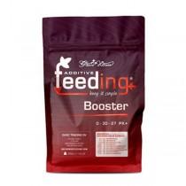 Powder Feeding - Booster - Green House