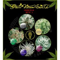 Mix I Indica  Green House Semillas