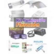 comprar kit iluminacion floracion