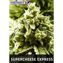 Supercheese Express Autoflorecientes Positronics