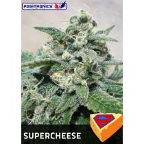 Super Cheese Femenina  - Positronics