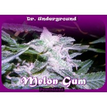Melon Gum – Dr. Underground
