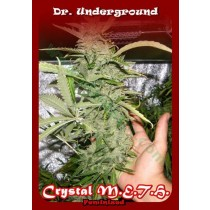 Crystal M.E.H.T – Dr. Underground