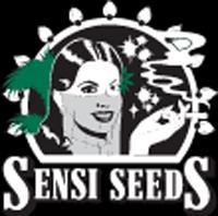 Sensi seeds compra r pida for Www houseplant net