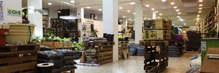 fotos tienda houseplant