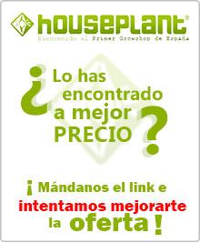 mejor precio houseplant