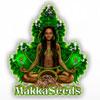 makka-seeds