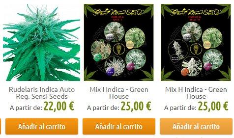 semillas marihuana indica