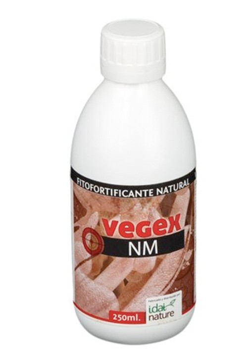 Vegex Nm Idai