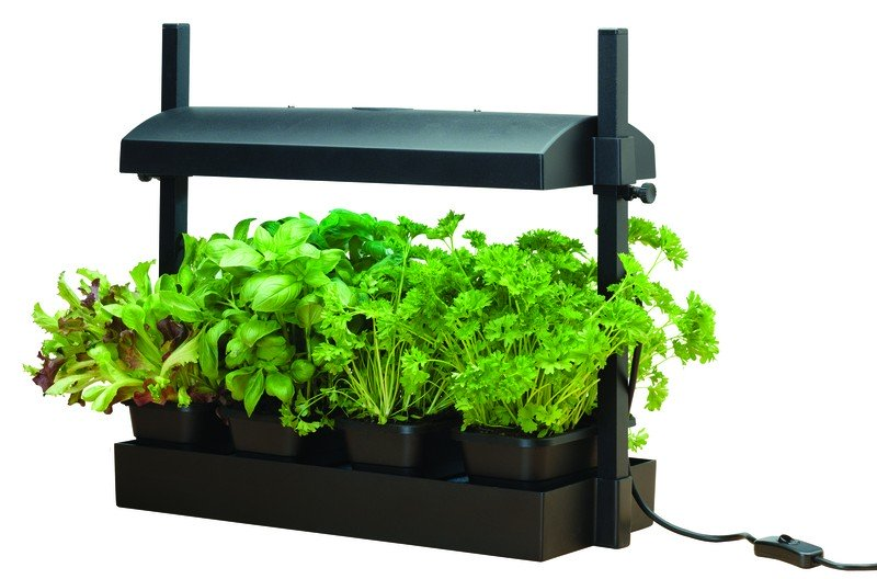 Micro Grow Light Garden