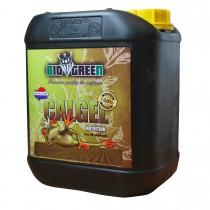 CalGel - BioGreen