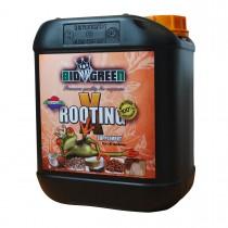 X-Rooting - BioGreen