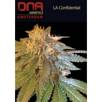 LA Confidential - DNA
