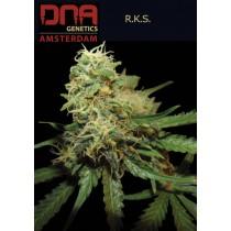 R.K.S - DNA