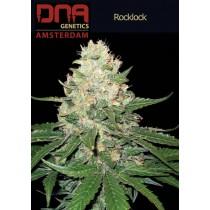 Rocklock - DNA