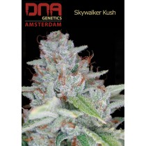Skywalker Kush - DNA