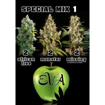 Special Mix 1 - Eva Seeds