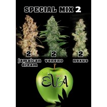Special Mix 2 - Eva Seeds