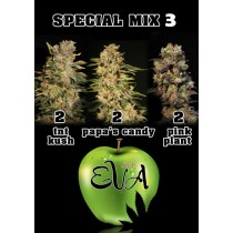 Special Mix 3 - Eva Seeds
