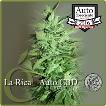 La Rica Auto CBD - Elite Seeds
