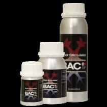 Root Stimulator - BAC
