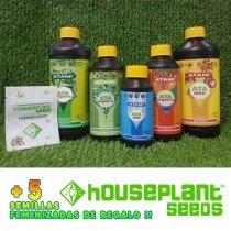 Pack Atami + 5 Semillas Houseplant Seeds