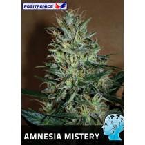 Amnesia Mistery Femenina - Positronics