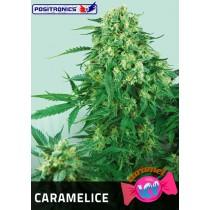 Caramelice Femenina - Positronics