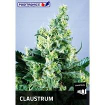Claustrum Femenina - Positronics