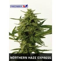Northern Haze Express Femeninas - Positronics