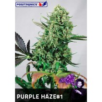 Purple Haze #1 Femeninas - Positronics
