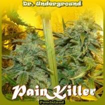 Painkiller – Dr. Underground