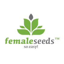 Outdoor Mix – Female Seeds