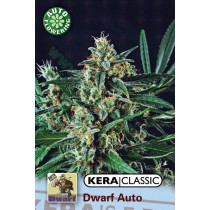 Dwarf – Kera Seeds