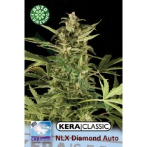 N.L.X. Diamond – Kera Seeds