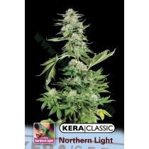 Northern Light – Kera Seeds