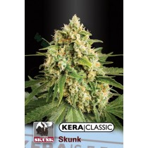 Shiva Skunk – Kera Seeds