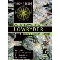 Lowryder Auto – Vision Seeds