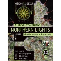 Northern Lights Auto – Vision Seeds