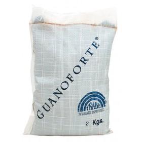 Guanoforte - Trabe