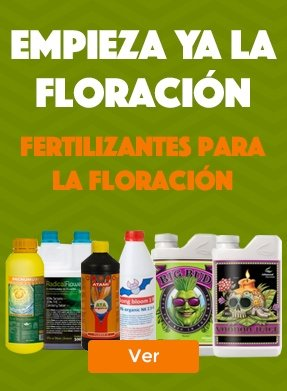 Fertilizantes Floreacion