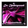 dr-underground