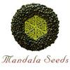 mandala-seeds