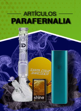 Parafernalia