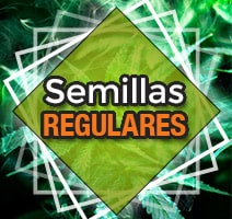 Semillas regulares